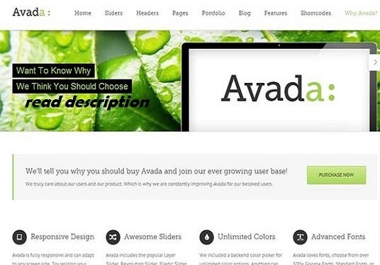 customize your website with Avada Theme within 2 days