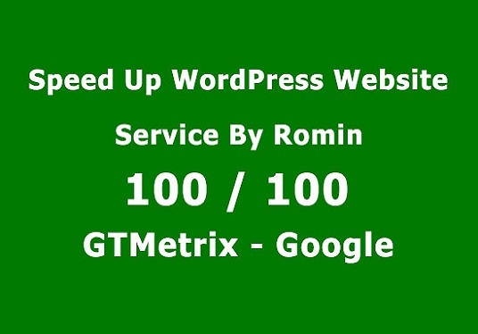 I will Speed Up Wordpress Website And 95+ Page Speed Score