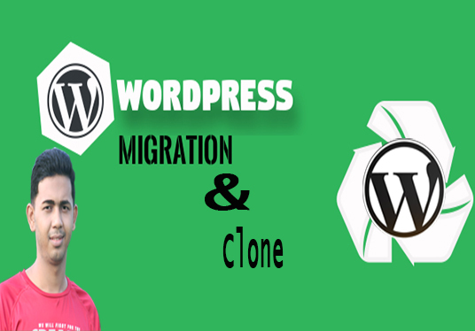 I will Clone,Redesign And Duplicate Your Wordpress Website