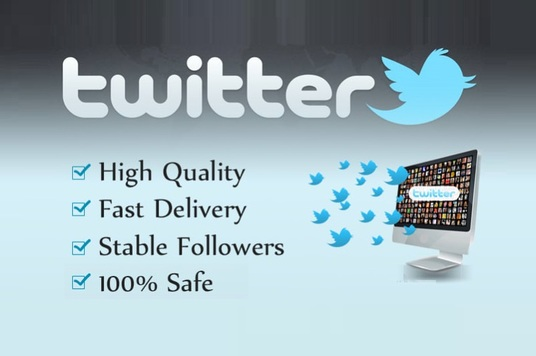 I will provide 500 Twitter Followers - Stable with Guarantee