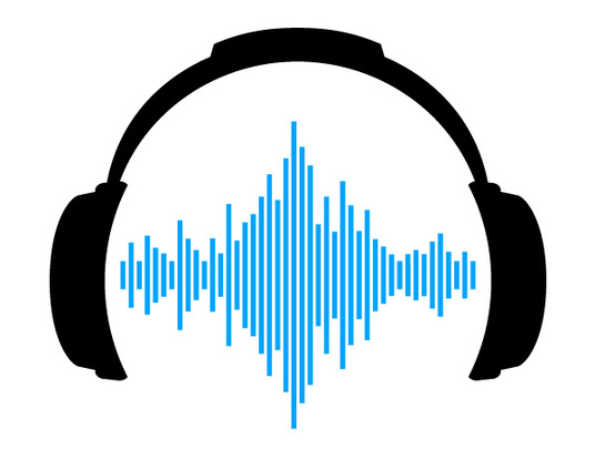 I will Transcribe any media file for you