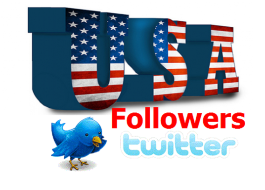 I will give you 1000 USA real twitter followers