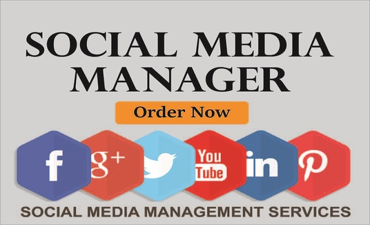be social media Marketing manager for your business