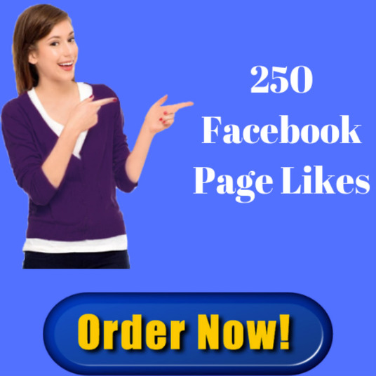 I will provide you 250+ permanent facebook page likes