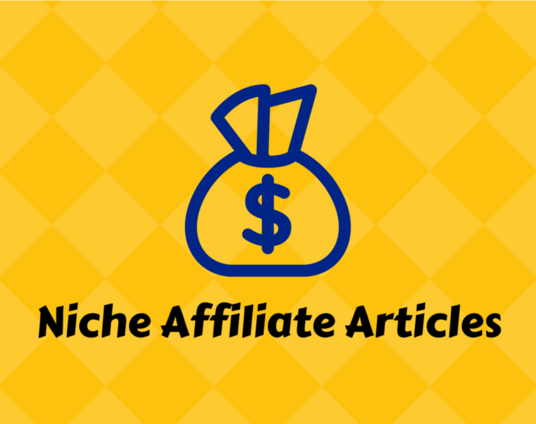 I will Write Niche Amazon Affiliate Articles