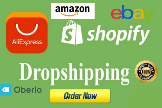 design shopify drop shipping store