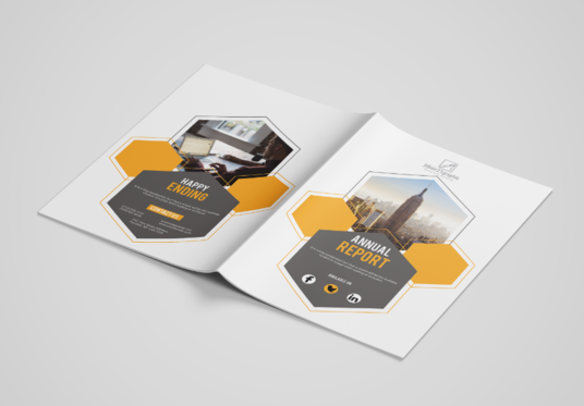 design annual report or business proposal