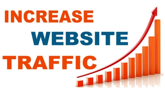 I will Give You Real Web Traffic