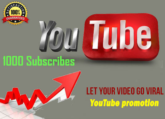 I will provide 1000 Organic YouTube Subscribes