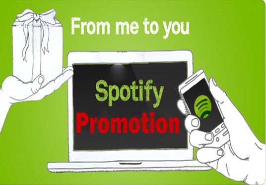 I will Provide 1,000 Spotify plays and 150 followers
