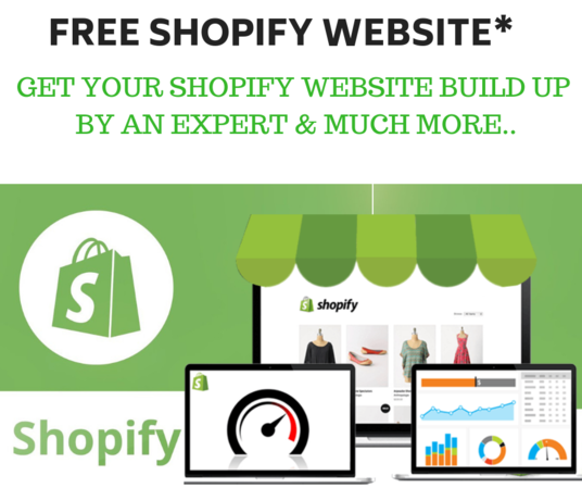 I will Make A Shopify Store For You That Is Free