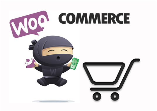 I will create Ecommerce Website with Woocommerce