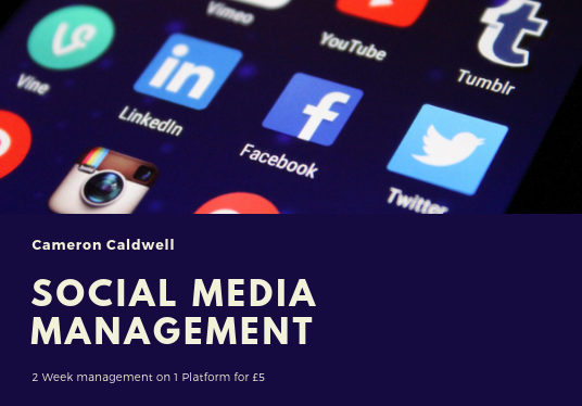 I will Manage and Post to Your Social Media for 2 Weeks