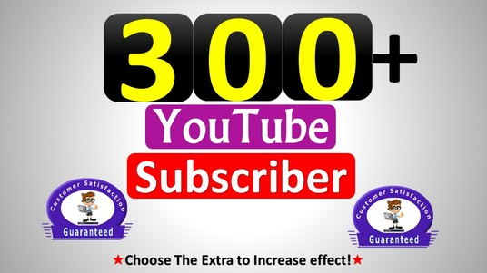 I will add 300 YouTube Channel subscribers