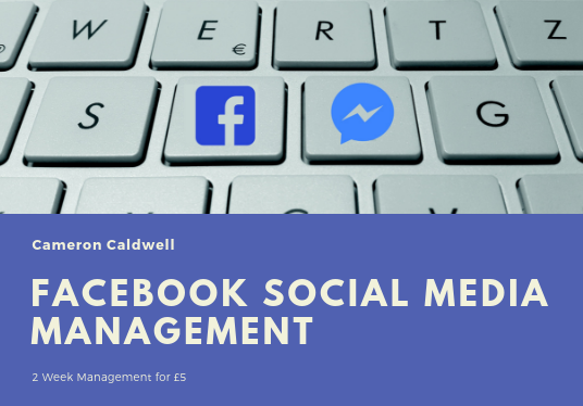 I will Manage and Post to Your Facebook for 2 Weeks