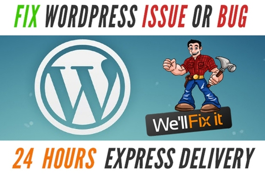 I will Fix Wordpress Errors Within 24 Hours