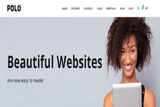 I will Develop Website for Your Business
