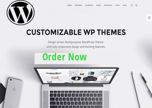 I will customize your WordPress theme