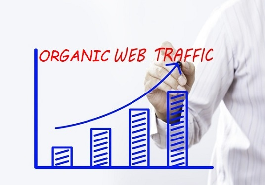 I will drive 18000 Website Traffic from USA & UK