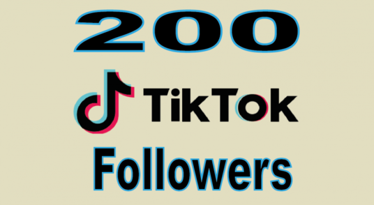 I will provide 200 Tik Tok Followers