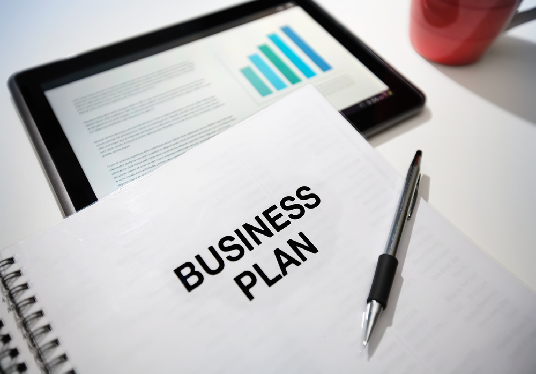 I will write a professional business plan for you