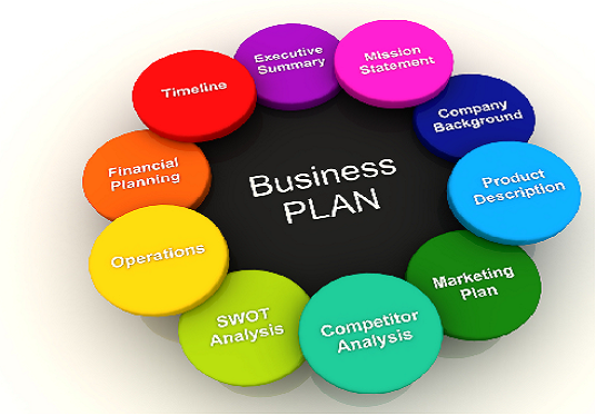 write a professional business plan for you