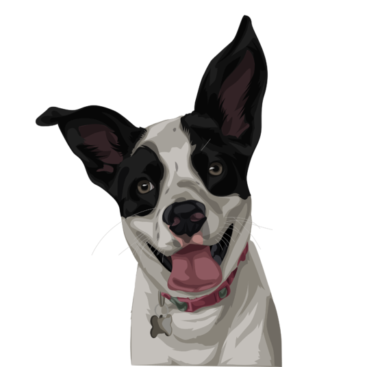 I will draw your pet into cartoon