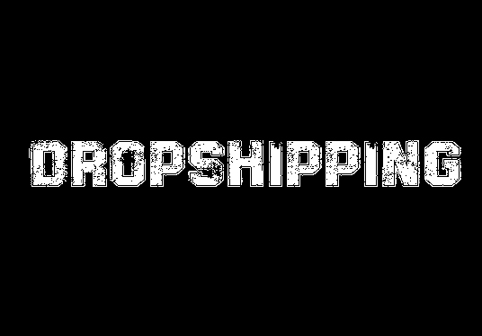 I will create complete  dropshipping website