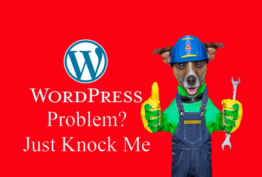 I will help with any kind of WordPress Problem, Issue or Error