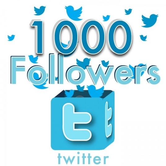 I will add 1000 Twitter Followers