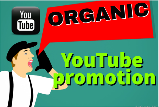 I will do organic Youtube channel promotion through social media