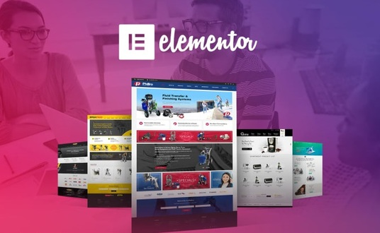 I will Design any pages using Elementor Pro