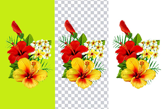I will do background removal 35 Images professionally