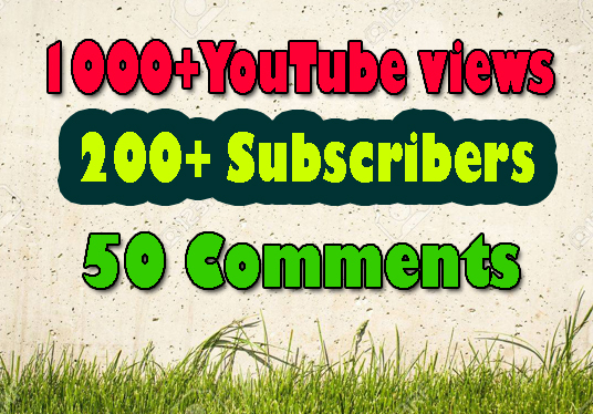 I will Give You 1000+ YouTube Views 200 Subscribes With 50 Comments