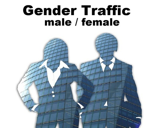 I will drive targeted gender  ( male / female ) unlimited organic traffic