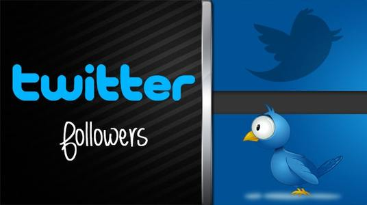 I will add 1000+ Twitter Followers
