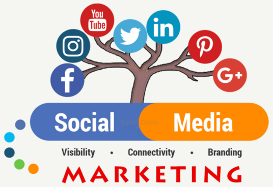 create your Facebook, Instagram and Twitter pages, using a consistent brand identity