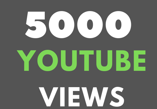 I will Provide You 5000+ YouTube Views