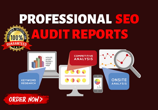 I will Do SEO Audit Report In 24 Hour