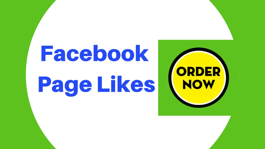 I will Run A Facebook Ad Campaign To Grow Page Likes