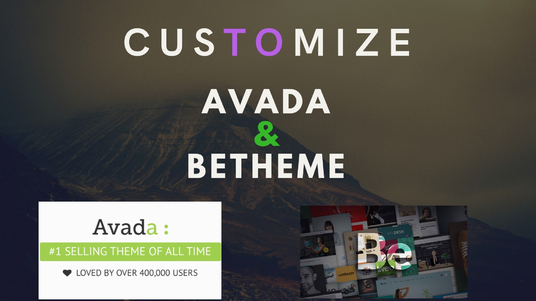 I will setup & customize avada & be-theme WordPress website