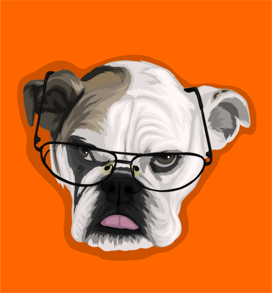I will Make Vector Illustration of Your Lovely Pet