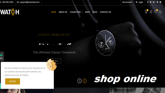 I will Make Your E-commerce Website within 2 days