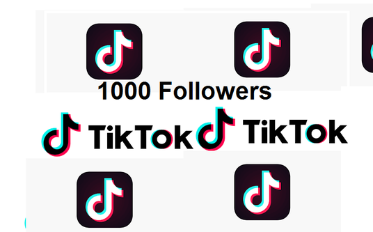 I will add 1000 Tik Tok Followers/Likes