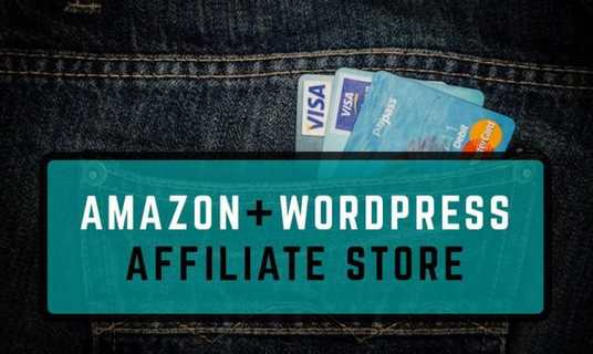 I will setup amazon affiliate topseller website