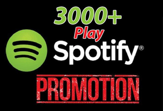 Provide 3000 Spotify Track Plays From US