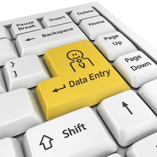 I will do Data Entry & Data Research