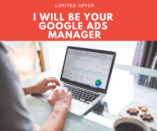 I will Manage Your Google Ads And PPC Campaign