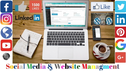 I will do social media and website management