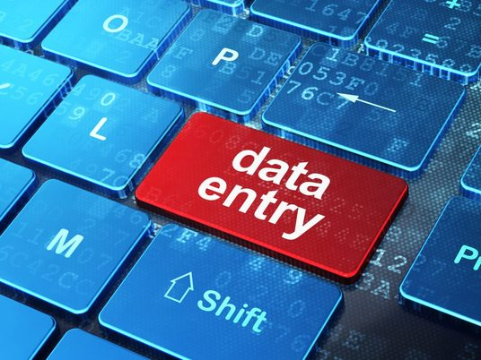 I will do data entry, copy-paste and pdf to word or excel work